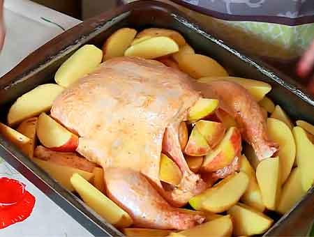 Тушку кладем на противень, по бокам раскладываем яблоки с картофелем